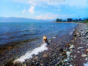 Nicol nimmt ein Fussbad - Cap Drepano – Greece