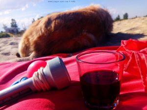 Martini am Korinos Beach – Greece
