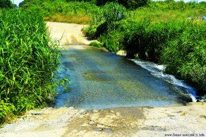 Lotta wieder mal - Flüsse überqueren ohne Brücke - on the Road in Greece