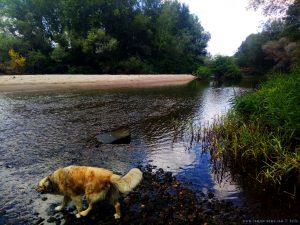 Nicol springt gleich in den Fluss - River Arda - Kastanies – Greece