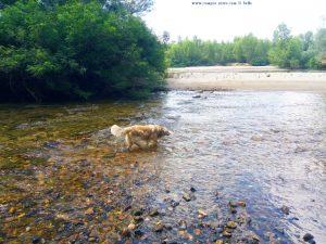 Nicol im River Arda - Kastanies – Greece