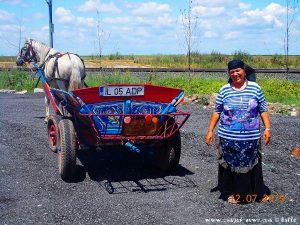 Pferdekutsche mit Frau rumänischer Frau in Tracht