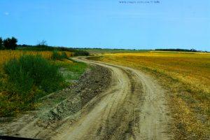 Auf Feldwegen unterwegs - Sfântu Gheorghe - Romania