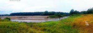 My View today - River Mureș ─ Pecica – Romania
