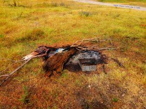 Offenes Feuer und unser Selfmadegrill à la Baffo - River Mureș ─ Pecica – Romania