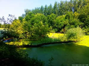 River Sió near Ocsény – Hungary