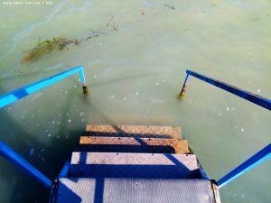 Wenig klares Wasser am Balatonoszödi Szabadstrand - Balaton Lake – Hungary