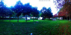My View today - Vigna - Italy