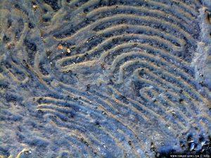 Fingerabdruck im Stein - Parco Righi - Genova - Italy