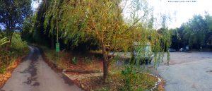 View today - Parco del Peralto - Genova – Italy