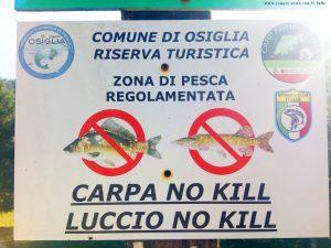 Karpfen und Hechte dürfen nicht getötet werden - Lago di Osiglia - Italy - 637m