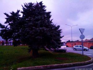 Parking at the Cemetery Corso Genova 3 - 12084 Mondovì - Cuneo – Italy