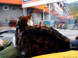 Warten auf Baffo - Genova – Italy