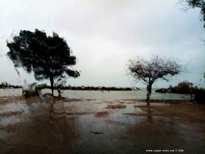 Platja de l'Eucaliptus ohne Strand - Amposta – Spain