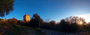 My View today - Torre de la Carrova - Amposta – Spain