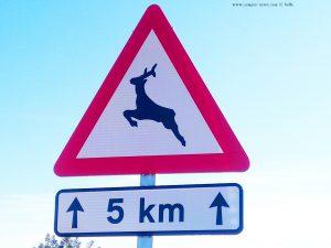 Verkehrszeichen in Spanien