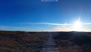 My View today - Platja la Garrofera – Spain