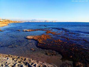 My View today - Agua Amarga Playa - Alicante – Spain
