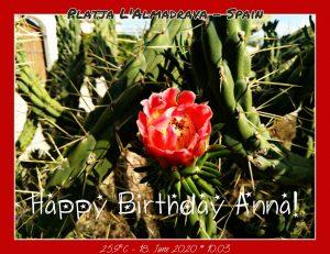 Happy Birthday Anna 🎀🎁🥂🍾🎂🎊🎉✨🎇🎈