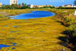 Kanal am Playa del Vivero - Playa Honda – Spain
