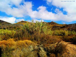 My View today - Cala Reona - Spain - WhatsApp – Group