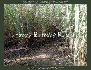 Happy Birthday Roland! 🎀🎁🥂🍾🎂🎊🎉✨🎇🎈