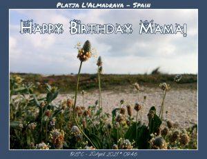 Happy Birthday Mama! R.I.P. Ruhe in Frieden!