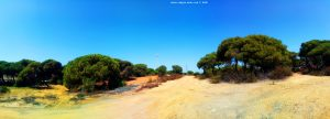 My View today - El Portill – Spain
