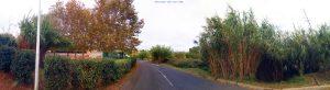 My View today - Villeneuve-lès-Maguelone – France